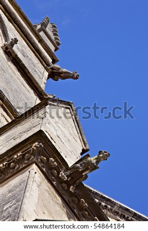 Gargoyles on the Saint Pierre Cathedral, Montpellier, France