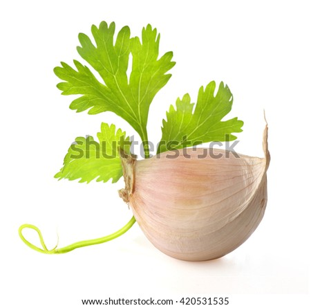 Garlic and coriander