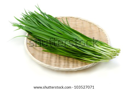garlic chives - stock photo