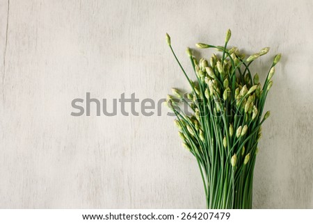 Garlic chives for cooking put on vintage table, food background - stock photo