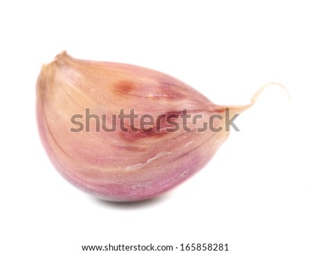 Garlic clove.  Isolated on a white background