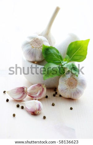 garlic cloves and garlic heads in mortar and pestle - herbs and spices - stock photo