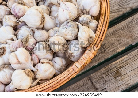 Garlic in rustic basket on old retro wooden table.
