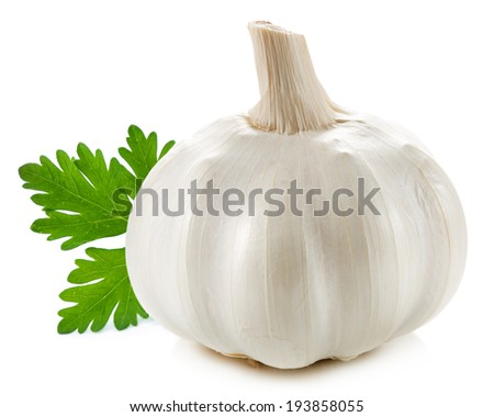garlic isolated  - stock photo
