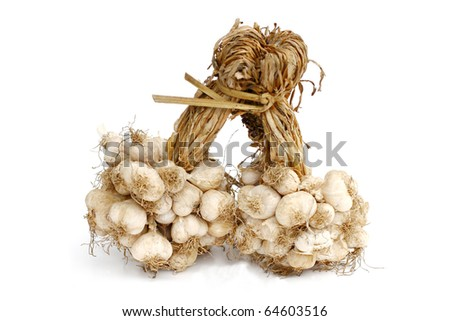 Garlic isolated on white - stock photo