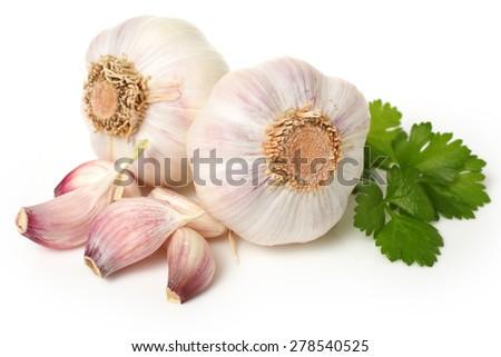 garlic isolated on white background - stock photo
