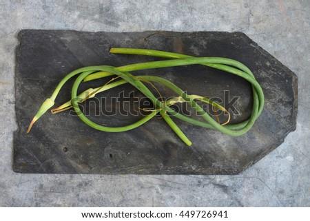 Garlic Scapes - stock photo