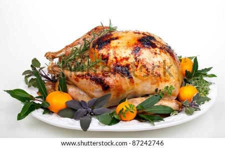 Garnished citrus glazed roasted turkey on tray over white background - stock photo