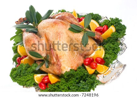Garnished roasted turkey on platter over white background (studio isolated, not PS) - stock photo