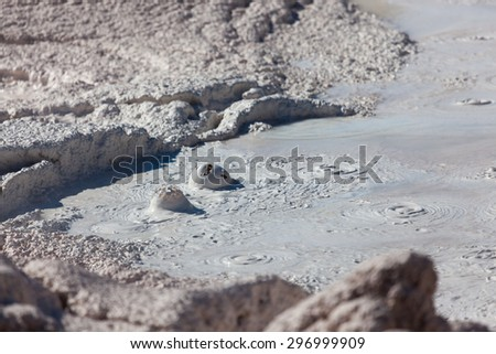Gas bubbles popping on the surface of a mud pool surrounded my dried and cracked clay at the Fountain Paint Pot located in Yellowstone National Park. - stock photo