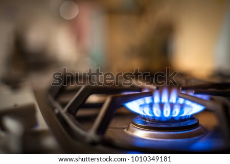 gas stove blue flames kitchen oven detail