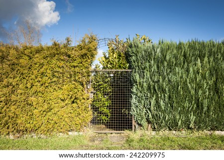 Gate - stock photo