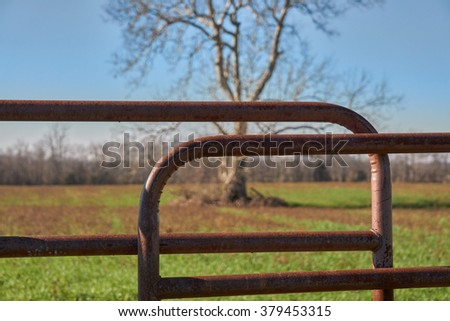 Gate to field with tree in background