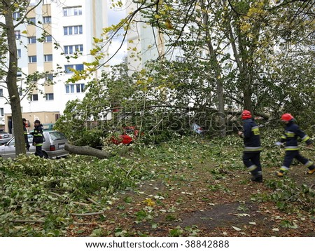 GDANSK - OCTOBER 14: Hurricane in the city Gdansk breaks dozens of trees and destroys many cars on October 14, 2009 in Gdansk, Poland.