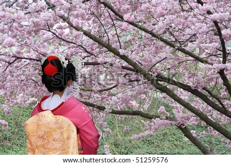 Geisha and blooming Sakura tree - stock photo