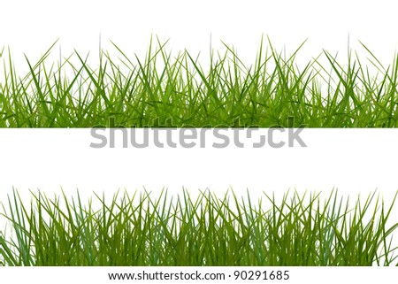 general green grass background on white background.