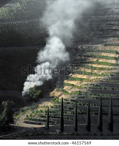 General view of the famous vineyards of Porto wine. Early morning light. - stock photo
