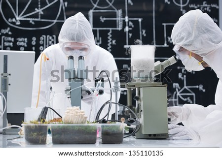 general-view  of two people analyzing under microscope in a chemistry lab around sprouted plants and mushrooms - stock photo