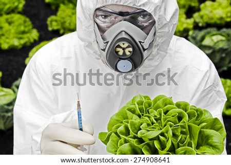 Genetic modification Man in protective white suit holding a modified lettuce - stock photo