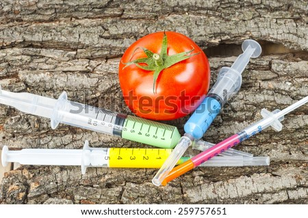 Genetically modified organism - ripe tomato with syringes - stock photo