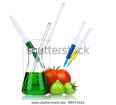 Genetically modified organism - ripe tomato with syringes and laboratory glassware on white background - stock photo