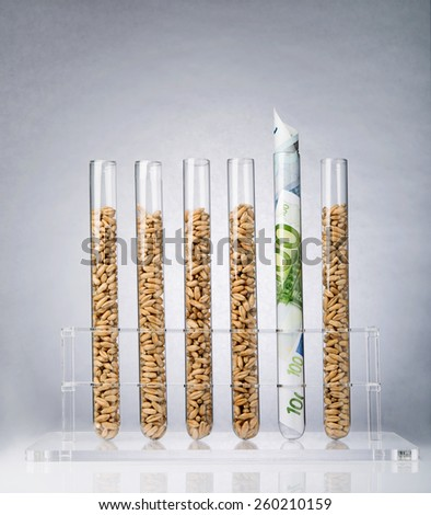 Genetically modified seeds inside of test tubes - stock photo