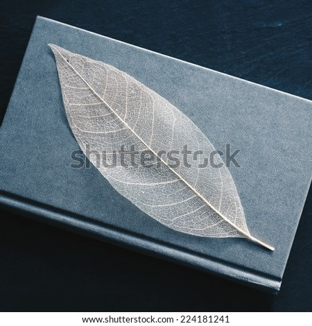 Gentle leaf on a book - stock photo