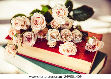 gentle roses with old books on a wooden background - stock photo