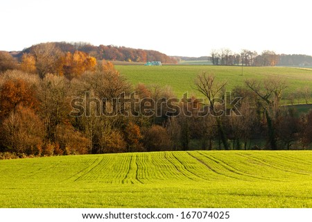 Gently rolling landscape of farmland with ploughed fields  copses of trees and shallow valleys shrouded in a fine mist in evening light near Duesseldorf  Germany  Europe - stock photo