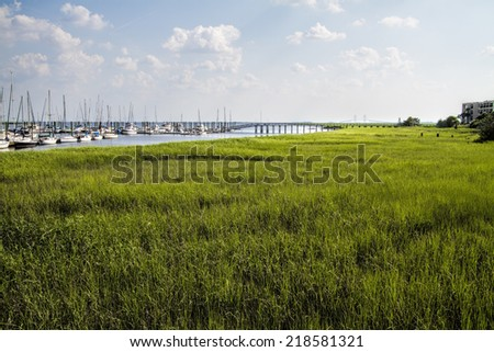 Georgia Oceanside Wetlands Landscape/Georgia Oceanside Wetlands  - stock photo