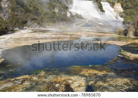 Geothermal Pool - Rotorua New Zealand