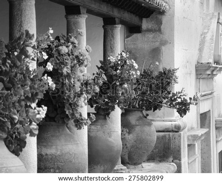 Geranium flowers in big ceramic pots between the columns at the terrace of old house. Obidos, Portugal. Selective focus on remote flowerpot. A game of light and shadow. Aged photo. Black and white.  - stock photo