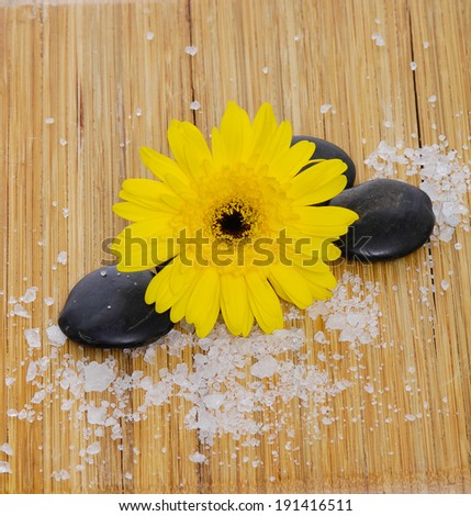 Gerber flowers, daisies with stone and many white salt and wooden board