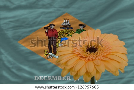 gerbera daisy flower and flag of us state of delaware as concept and symbol of love, beauty, innocence, and positive emotions - stock photo