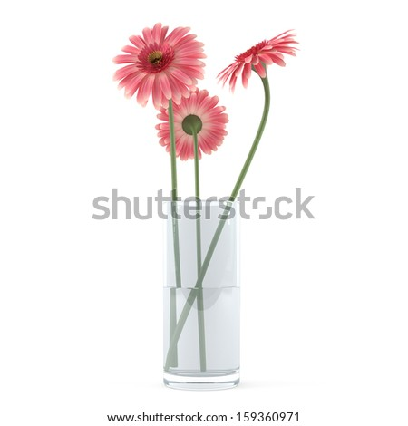 Gerbera flowers in the glass vase