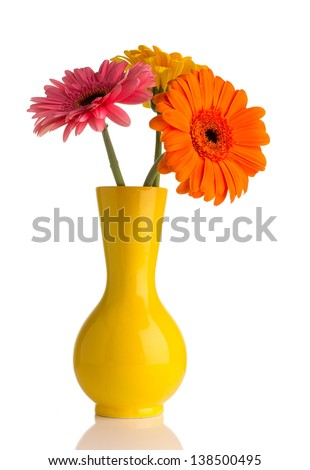 Gerbera in vase isolated on the white background. - stock photo