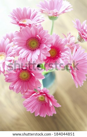 Gerbera on the table