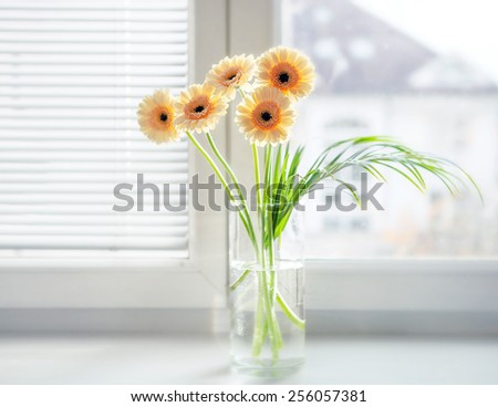 Gerberas bouquet in vase on the windowsill with bright daylight - stock photo