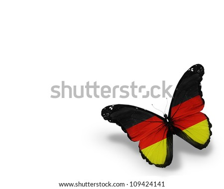 German flag butterfly, isolated on white background - stock photo