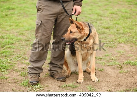 German shepherd dog with owner in park - stock photo