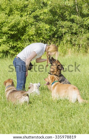German shepherd with ears back listens to the forceful commands of the female dog trainer. A group of other dogs surround the scene. Focus is on the woman and the shepherd.