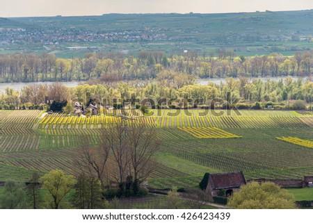 German Winery by the Rhine river  in Wiesbaden, Hesse, in the Rheingau wine-growing region of Germany. - stock photo