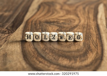 German word HOLZWEG (wrong track) on wooden cubes - stock photo