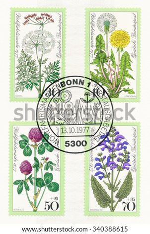 GERMANY - CIRCA 1977: A  first day of issue postmark printed in Germany, shows Meadow Flowers: Caraway, Dandelion, Red clover, Meadow sage, circa 1977 - stock photo