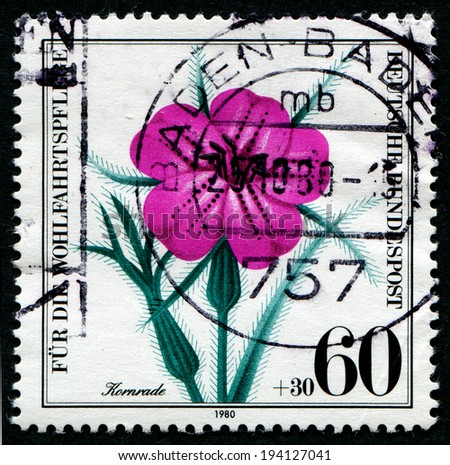 GERMANY - CIRCA 1980: a stamp printed in the Germany shows flower, Germany, circa 1980 - stock photo