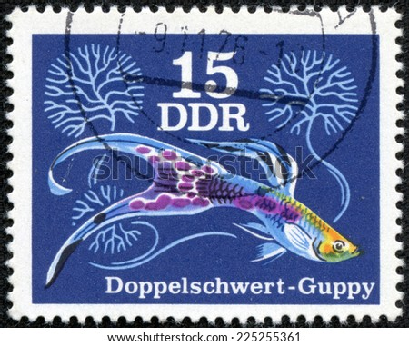 GERMANY- CIRCA 1976: stamp printed by Germany, shows Guppy is one of the most popular freshwater aquarium fish species in the world, circa 1976. - stock photo