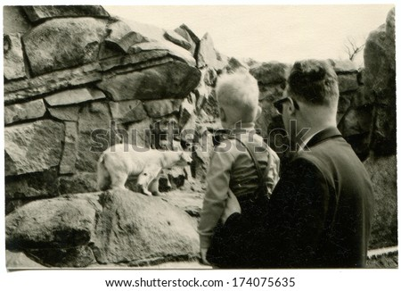 GERMANY -  1960s: An antique photo shows man with a boy looking at the polar bear in zoo