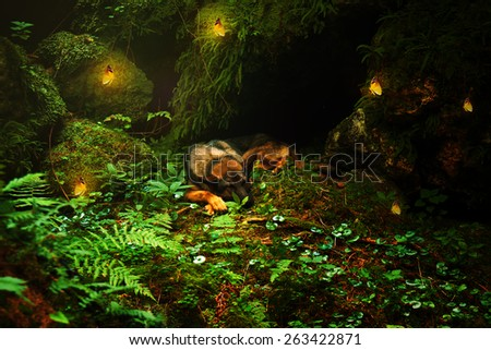 Germany sleeping  Sheep-dog laying on the stone with with yellow butterflies in beautiful forest light. - stock photo
