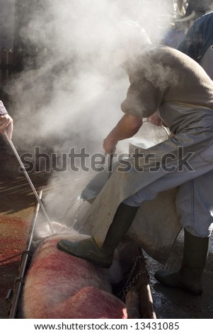 Getting pork meat ready for cutting in pieces and smoking - stock photo