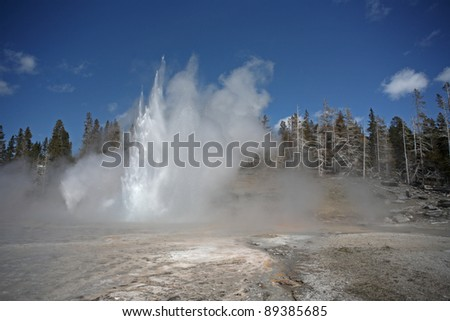 Geyser errupts on a spring afternoon in the Upper Geyser Basin. Yellowstone National Park, Wyoming - stock photo